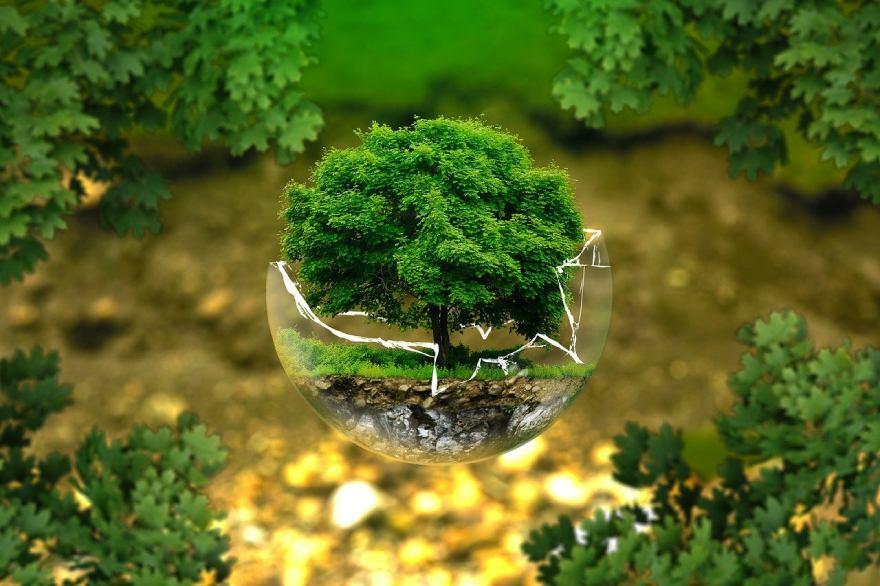 Как да избегнем екологични щети?